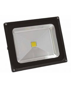 50W LED Floodlight